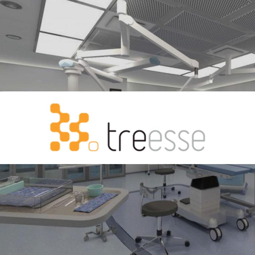 Treesse case study. VR app development